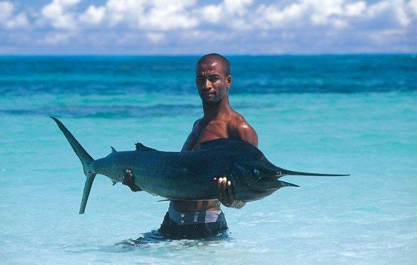Африка Сейшелы