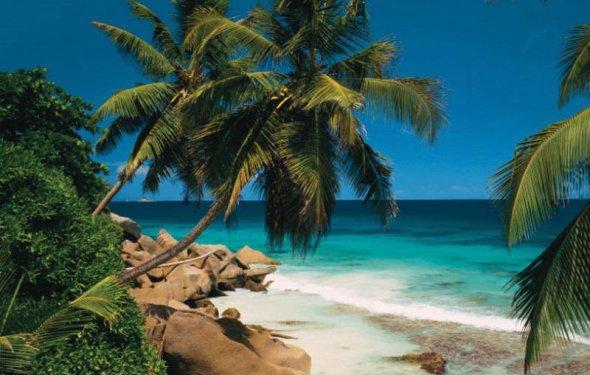 сейшельские острова туры цена